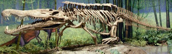 Mounted skeleton of a Redondasaurus at the Carnegie Museum of Natural History