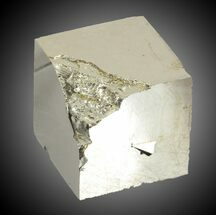 "Buy Bargain 1.29"" Pyrite Cube - Navajun, Spain - #31141"