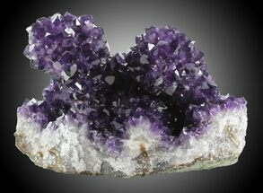 Quartz var. Amethyst - Fossils For Sale - #31209