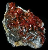 Vanadinite on Barite with Geothite - Fossils For Sale - #32361