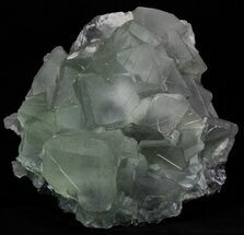 Fluorite - Fossils For Sale - #32415