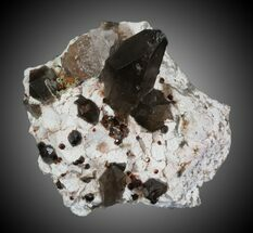 Spessartine Garnet & Smoky Quartz - Fossils For Sale - #32577