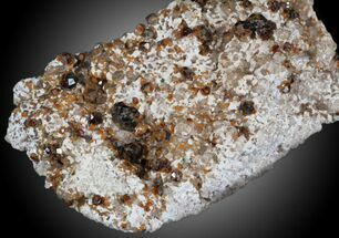 Spessartine Garnet & Smoky Quartz - Fossils For Sale - #32580