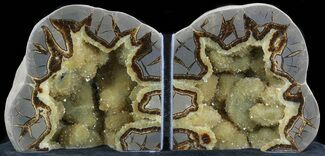 "Buy 5.5"" Polished Septarian Bookends - Crystal Filled - #33133"