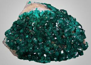 "Exceptional, 2.78"", Gemmy Dioptase Cluster - Kazakhstan For Sale, #34949"