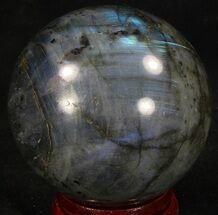 "Buy 2.68"" Flashy Labradorite Sphere - Great Color Play - #37102"