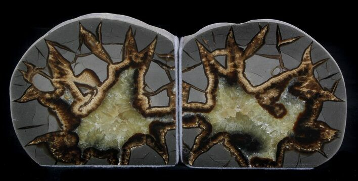 "4.4"" Polished Septarian Bookends"