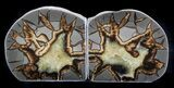 "4.4"" Polished Septarian Bookends - #37243-3"