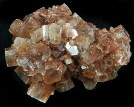 Aragonite - Fossils For Sale - #37320