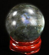 "1.4"" Flashy Labradorite Sphere - Great Color Play For Sale, #37676"