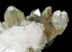 "Buy 3.7"" Faden Quartz with Chlorite - Pakistan - #38626"