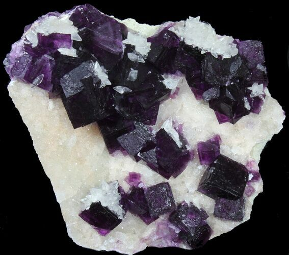 "3.7"" Dark Purple Cubic Fluorite on Quartz - Exceptional!"