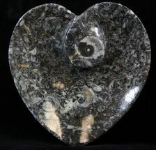 "Buy 4.5"" Heart Shaped Fossil Goniatite Dish - #39322"