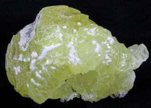 "Buy 1.4"" Lemon-Yellow Brucite - Balochistan, Pakistan - #40375"