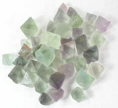 Fluorite - Fossils For Sale - #40704