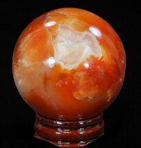 Carnelian - Fossils For Sale - #41202