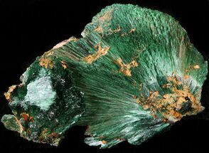 Malachite - Fossils For Sale - #42063