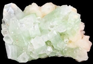 "4.2"" Green, Zoned Apophyllite With Peach Stilbite - India For Sale, #44414"