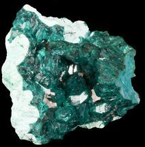 "2.20"" Emerald Green, Dioptase Cluster on Plancheite - Congo  For Sale, #45299"