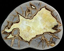"5.9"" Polished Septarian Slice - Utah For Sale, #45899"