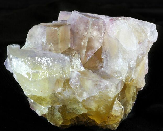 "2.9"" Cubic Fluorite Crystal Cluster - Cave-in-Rock, Illinois"