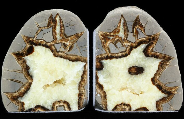"4.1"" Polished Septarian Bookends"