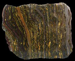 "Buy 5.9"" Polished Tiger Iron Stromatolite - (2.7 Billion Years) - #46612"
