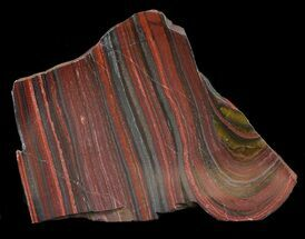 "3.9"" Polished Tiger Iron Stromatolite - (2.7 Billion Years) For Sale, #46814"