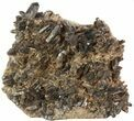 "11.6"" Wide Smoky Quartz Cluster From Brazil - #47194-1"
