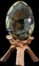 "6.8"" Septarian ""Dragon Egg"" Geode - Black Crystals For Sale, #48002"