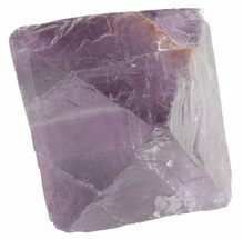 Fluorite - Fossils For Sale - #48423