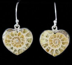 Fossil Ammonite Heart Earrings - Sterling Silver For Sale, #48734