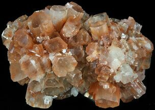 Aragonite - Fossils For Sale - #49269
