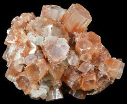 Aragonite - Fossils For Sale - #49302