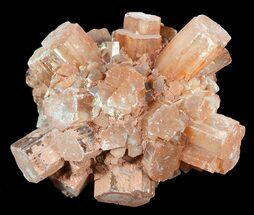 "Buy 1.7"" Aragonite Twinned Crystal Cluster - Morocco - #49318"