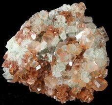 "2.4"" Aragonite Twinned Crystal Cluster - Morocco For Sale, #49247"