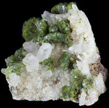 "2.1"" Lustrous, Epidote Crystal Cluster with Quartz - Morocco For Sale, #49406"