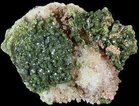 "Buy 2.6"" Lustrous, Epidote Crystal Cluster with Quartz - Morocco - #49417"