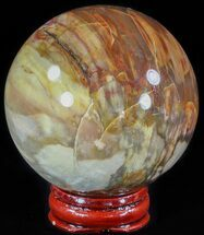 "Buy 2.6"" Colorful Petrified Wood Sphere - #49765"
