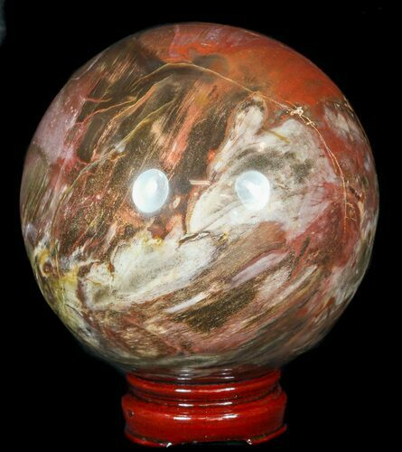 "4.7"" Colorful Petrified Wood Sphere"