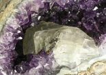 "14.5"" Deep Purple Amethyst Geode with Calcite - Top Quality - #50065-1"