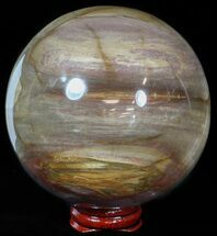 "3.7"" Colorful Petrified Wood Sphere For Sale, #49769"