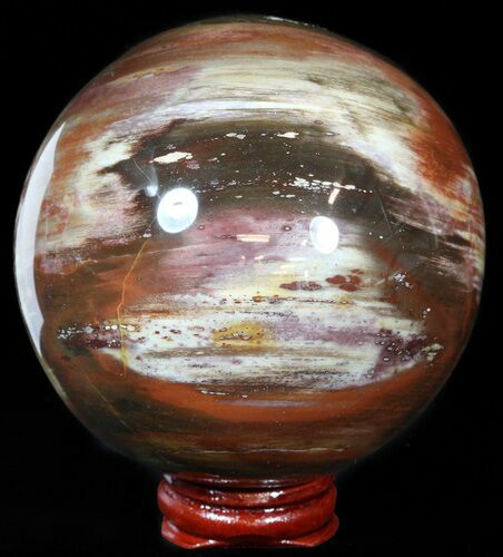 "3.5"" Colorful Petrified Wood Sphere"