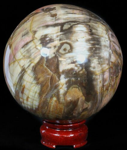 "3.9"" Colorful Petrified Wood Sphere"