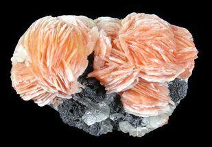 Buy Cerussite, Barite, Galena - Wholesale Flat (About 100 pieces) - #50968