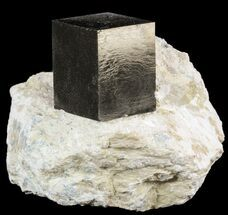 ".82"" Pyrite Cube In Matrix - Navajun, Spain For Sale, #51233"