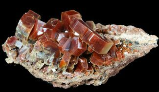 "Buy 2.4"" Red & Brown Vanadinite Crystals on Matrix - Morocco - #51286"
