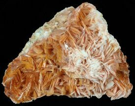 "Buy 3.2"" Pink and Orange Bladed Barite on Matrix - Morocco - #51475"