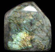 Labradorite - Fossils For Sale - #51537