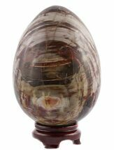 "7.3"" Polished Petrified Wood ""Egg"" - Colorful For Sale, #51692"